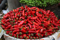 Hot, hot, hot chillies – great colour and ideal for food photographyhttps://carolinetrotter.co.uk/